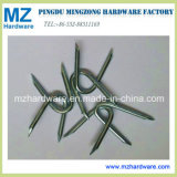 Galvanzied U Fence Staples U Type Nail with Cut Point