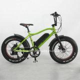 250W 20inch Fat Tire Wheel Electric Mountain Bike
