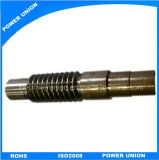 Stainless Steel Worm Gear for Plastic Extrusion Machines