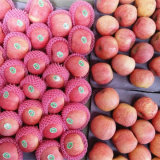 New Crop Chinese Fresh FUJI Apple Good Quality