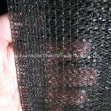 New Virgin PE Sun Shade Net in Flat Wire for Agriculture