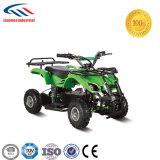 New Model 500W Motor 36V Lead Acid Battery ATV