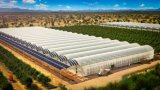 Vegetable Greenhouse New PE Sun Shade Cloth Net with UV