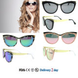 Custom Sunglasses Cat Eye Sunglasses Polarized UV 400 Ce Sunglasses