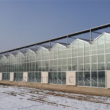 Float/Tempered Low Iron Glass for Greenhouse/Horticulture