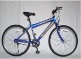 26inch Man Mountain Bike Single Speed