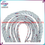 Good Quality Twisted PP/PE/Nylon Rope 3strand/4strand/8strand Polypropylene/Polyethylene Plastic Rope, PP Danline PP Tali for Fishing