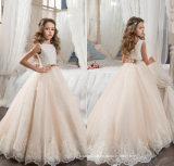 Girl′s Pageant Party Gowns Sleeves Lace Flower Girl Dresses FL2015