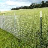 Wholesale Galvanized High Tensile Prairie/Pastureline/Farm/Cattle Fences