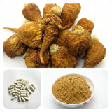 Male Herbal Sexual Product Ginseng Epimedium Softgel