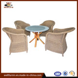 Brown 4-Person Rattan Sofa Dining Sets (WF050047)