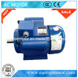 Ce Approved Yl Induction Motor Prices with Copper Coils