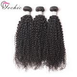 Kinky Curly Brazilian Virgin Hair Weave Bundles Wholesale 100 Remy Human Hair Extensions