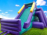 2017 New Most Popular Giant Inflatable Slide for Sale