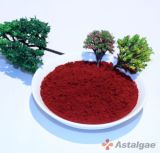 Haematococcus Pluvialis Powder / Astaxanthin Powder 4% Plant Extract Health Food Additive Herbal Extract