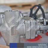 API602 Solid Wedge Welded Bonnet Forged Cl800 Gate Valve
