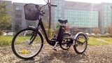 "24"" 3 Wheel Adult Electric Cargo Tricycle with Cabin"