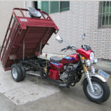 Motor Cargo Tricycle Five Wheel Gas Tricycle (SY250ZH-F9)