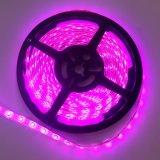 4.8W 12V Ultra Thin 3528 Heat Resistant 60LEDs/M LED Strip Light