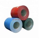 Wholesale Low Price Prepainted Galvanized Steel Coil