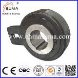 AV Series Wholesale Roller Type Freewheel Backstops Engine Bearing