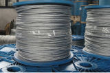 Galvanized Steel Wire Rope 6X7+FC with Fibre Core