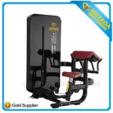 Hyd 2006 Commercial Sport Exercise Camber Curl Gym Fitness Body Building Machine