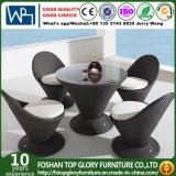 Outdoor Furniture Garden Dining Set (TG-1206)