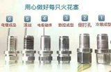 Spark Plug for Motorcycle