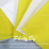 High Tension Polyester Screen Printing Mesh/Bolting Cloth