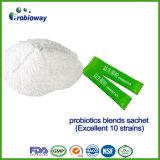 Cost-Effective Compound Probiotics Nutritional Dietary Supplement 10strains