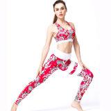 China Manufacturer Wholesale Yoga Bra Set Cheap Custom Fitness Yoga Wear