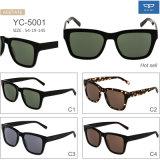 Acetate Frame Eyewear Sunglasses for Men Popular Design Factory Directly Supply Ready Goods