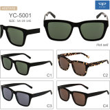 Acetate Frame Eyewear Sunglasses for Men Popular Design