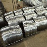 Stainless Steel Wire / 304 Bright Soft Annealed Stainless Steel Wire
