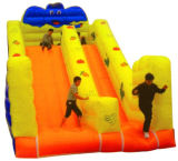 Giant Inflatable Slide, Inflatable Jumping Slide