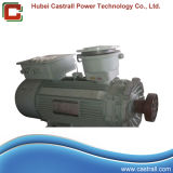 80kw Explosion Proof Brushless Excitation Dynamo
