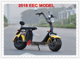 2018 EEC Approved Fat Tire City Coco Scooter Es8004viieec
