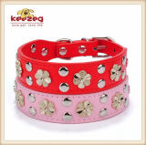Gold Color Rivet /Real Leather Pet Dog Collars/ Leashes (KC0062)