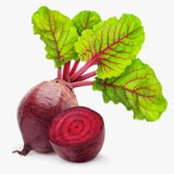 Manufacturer of Beet Root Red/FDA; ISO22000; Kosher; SGS; Halal