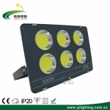 High Power Waterproof IP65 300W LED Floodlight for Outdoor/Stadium/Garden Lighting