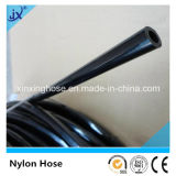 Nylon Pipe with Best Price