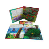 English Educational 3D Flap Picture Children Reading Card Book Printing