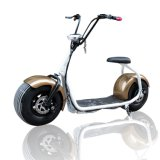 Cheap Adult Electric Bike Fat Tire Electric Motorcycle