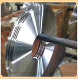Annealed or Tempered Stainless Steel Strip 201, 301, 304, 304L, 316, 316L, 410, 430