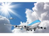 Consolidate Fast Shipping/Air Shipping