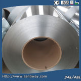 Galvanized Steel Sheet / Coil (in China)