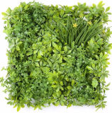 Anti UV Protected Artificial Boxwood Fern Plant Privacy Green Wall Vertical Garden