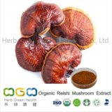 Natural Plant Extract Organic Reishi Mushroom / Ganderma Extract for Boosting Immune System Herb Herbal