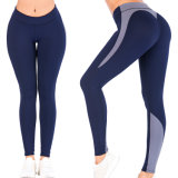 OEM Wholesale Factory Sexy Women/Ladies Yoga Fitness Gym Sports Wear